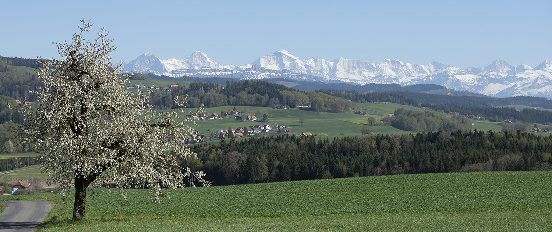 Alpenkette von Worb aus